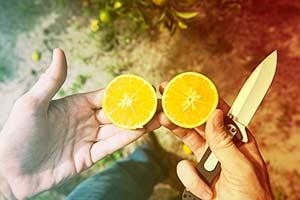 Cut open citrus fruit